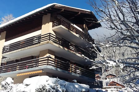 Charming and quiet apartment in Champex-Lac