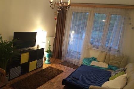 80 m² Wohnung im Herzen von Graz - グラーツ