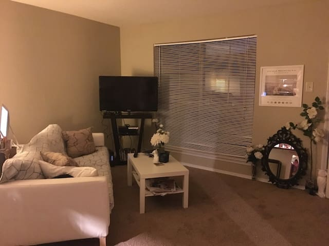 Perfect location in Galleria Area off Westheimer - Houston - Apartment