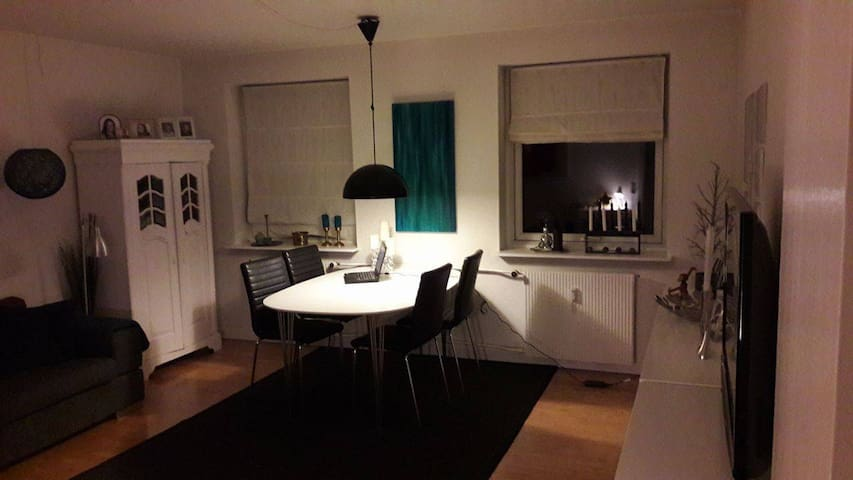 Lejlighed i roligt område  25 min. fra København - Hedehusene
