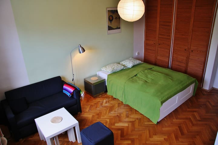 Cozy studio close to center - Praga - Pis