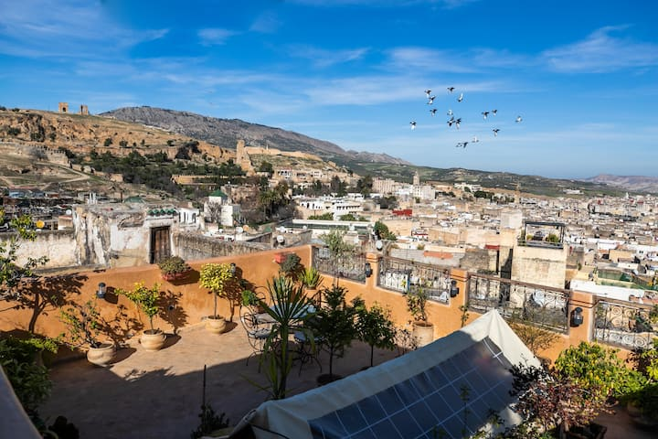 Experience  Fez from the heart of the Medina