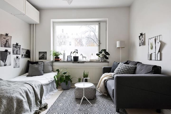 Cozy studio in Stockholm's best neighborhood