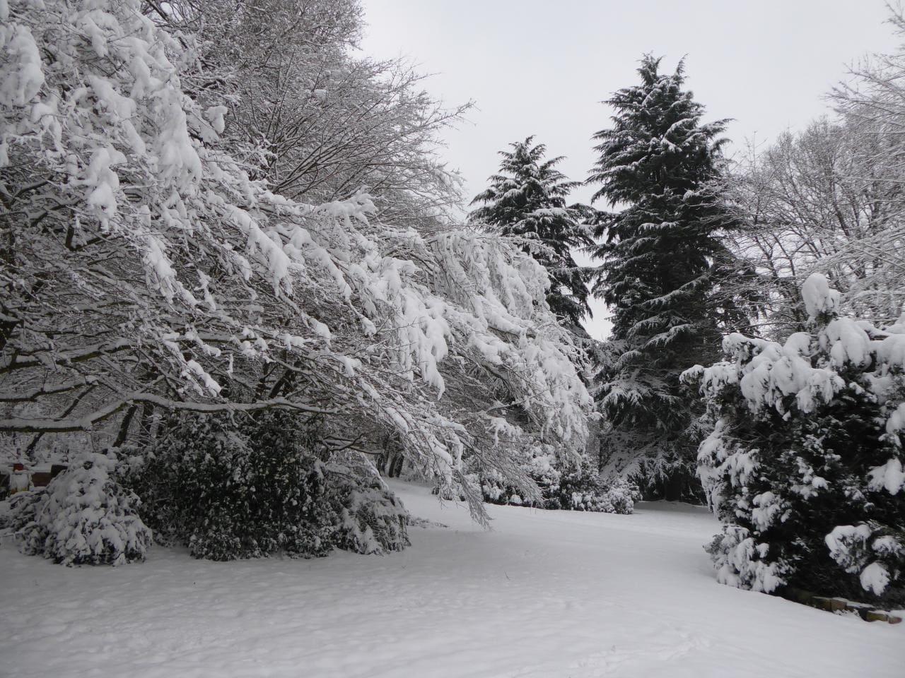 cet hiver 2018