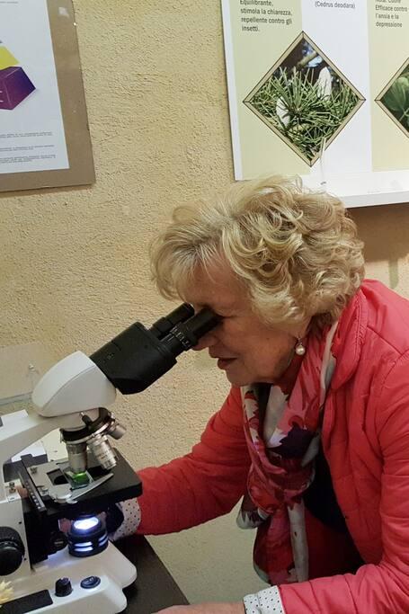 Osservazioni oli essenzialal microscopio