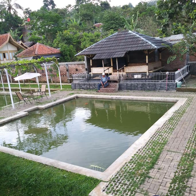 fishing pool