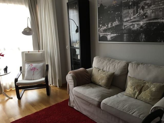 Cozy apartment close to airport - Madrid