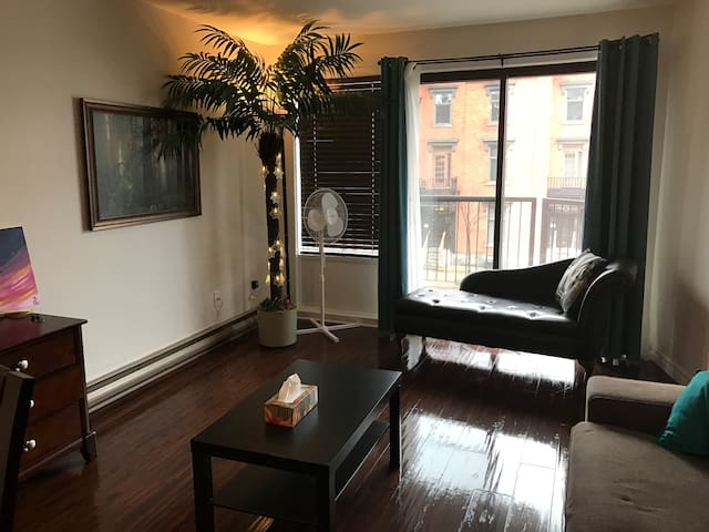 Small private room in St. Laurent Street - Montréal - Flat