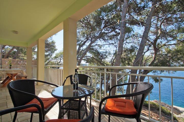 Grandmother house - near sea pine trees seaview