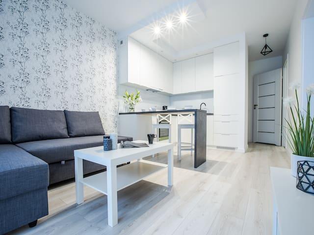 Emihouse Rzeszów - Apartament Suite z klimatyzacją