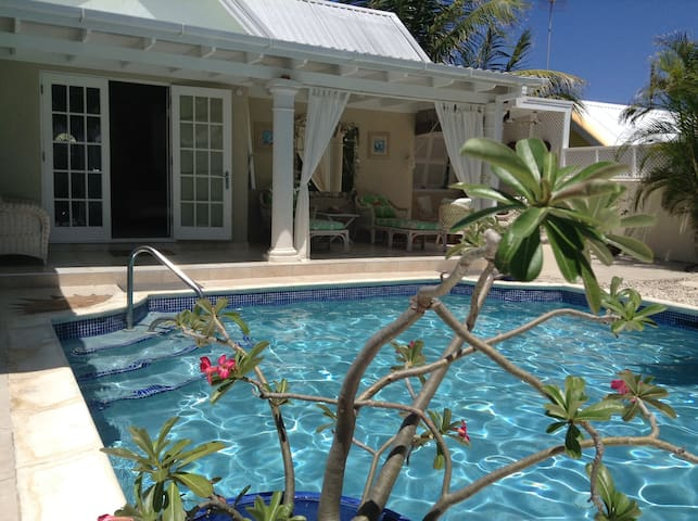 Sunrise Villa , Bottom Bay private garden and pool - Saint Philip - Willa
