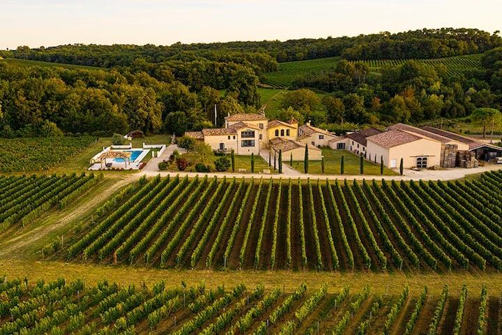Château près de Bordeaux - au milieux des vignes