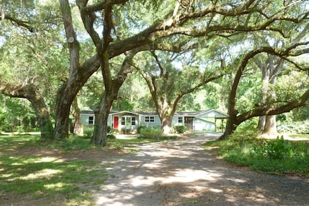 Peaceful Retreat - Johns Island - Haus