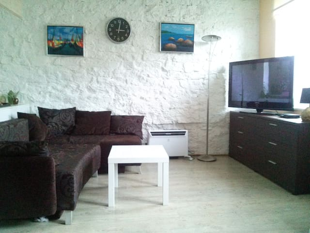 Cozy apartment with free parking in downtown area! - Tallinn - Trädhus
