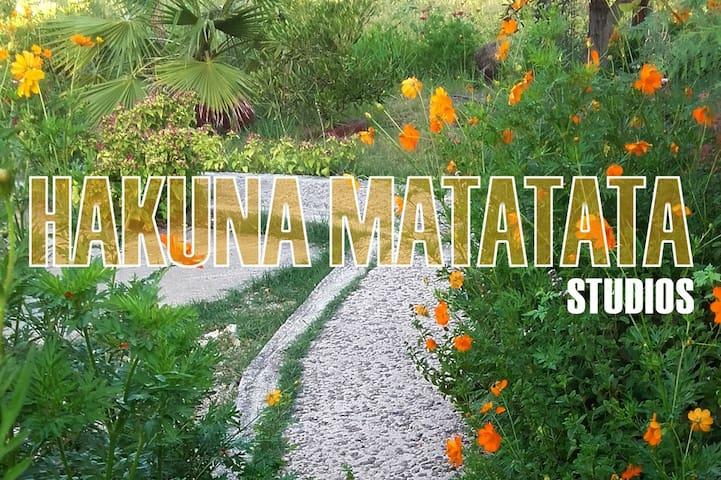 """""""Hakuna Matata"""" Studio 1"""