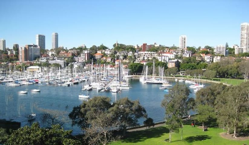Stylish 1 Bed Room Apartment - Rushcutters Bay - Apartment