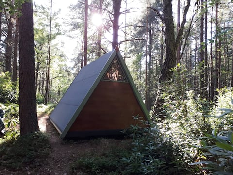 Woodland hut for nature lovers near Speyside Way