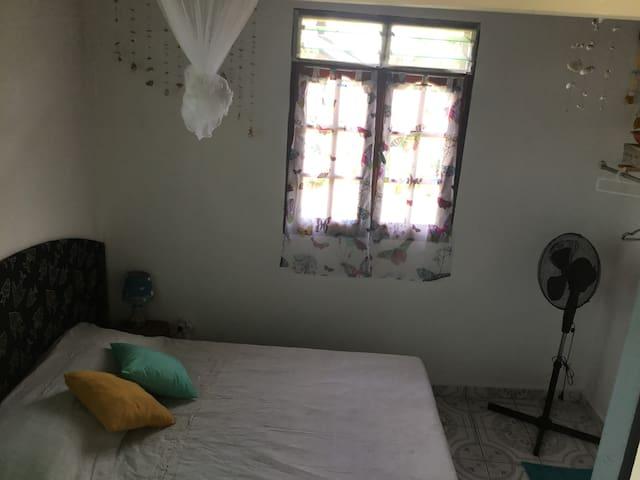 Moustiquaire et ventilateur