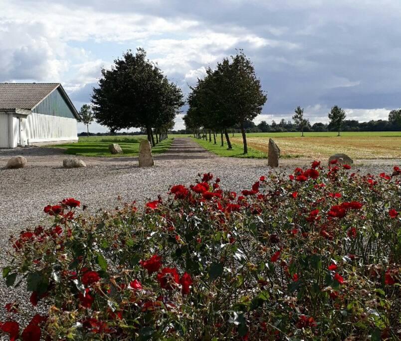 Entrance to our farm