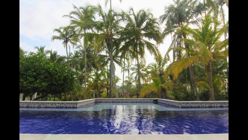 Blue Mango Beach Hotel - King Suite with Pool (2)