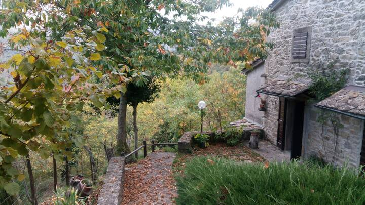 Rustic COTTAGE in TUSCANY COUNTRYSIDE n MOUNTAINS