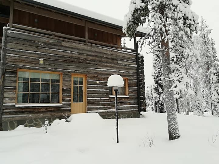 Log Apartment Aarni in 2 floors