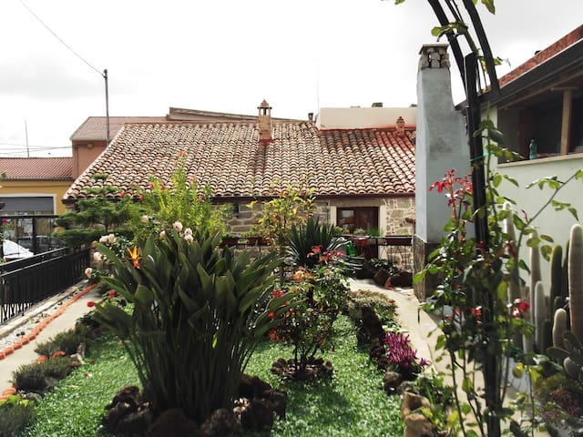 domos antigas - Bottidda - Bed & Breakfast