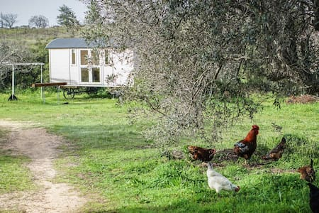 Cozy shepherd hut on farm B&B - Luz - Bed & Breakfast