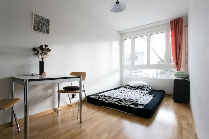 In the center close to Kursaal - Berne - Apartment
