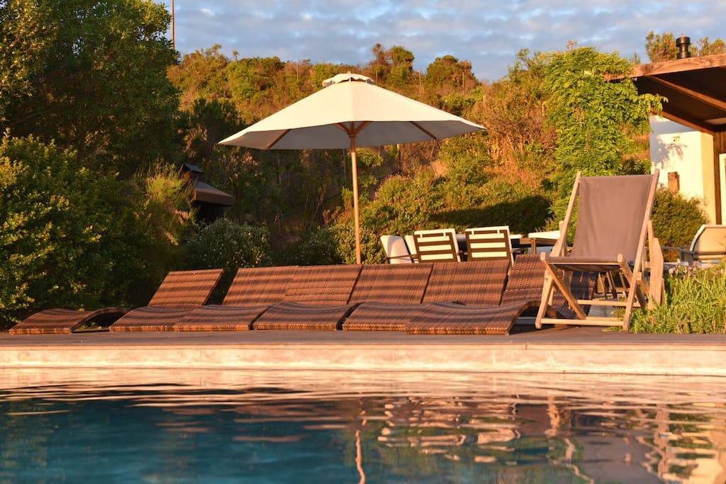 Pool - deck