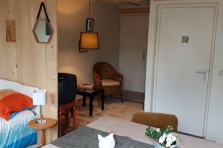 Rubecula: beautiful studio in south-west Drenthe