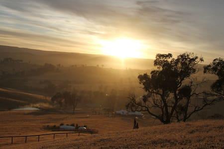 Genuine Australian working farm