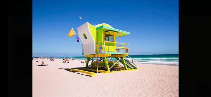 Beach Studio