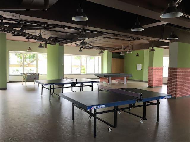 Ping Pong + Billard