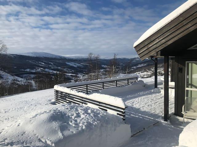 New Cabin near Roros / Hessdalen