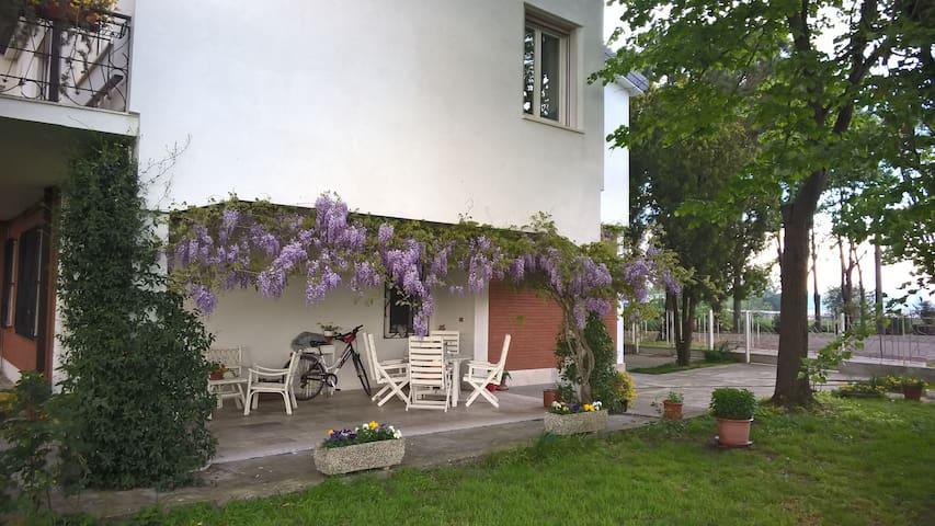 Nel Delta del Po, tra Venezia, Ravenna e Ferrara - Codigoro - Talo