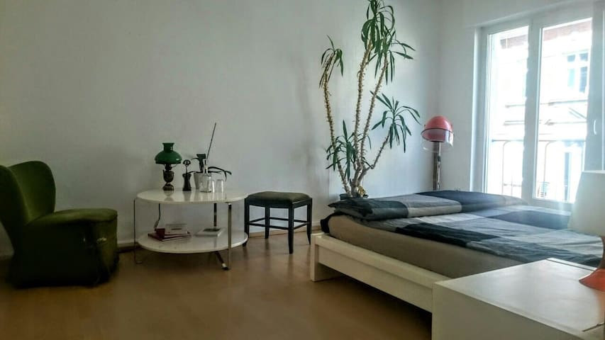 Green City Suite im Stühlinger - Freiburg im Breisgau - Leilighet