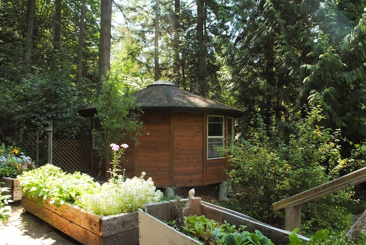 Sacred Groves--an enchanting place! - Bainbridge Island - Yurt