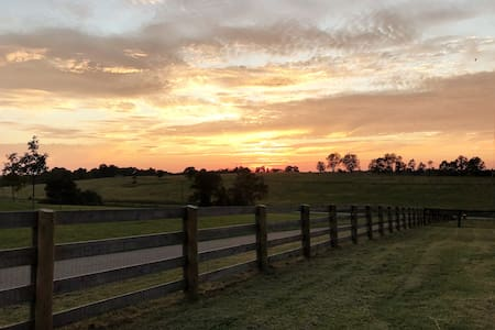 Horse Lover's Farm Getaway 15 mins from Lexington