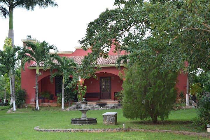 Quinta Las Ceibas - Cancún - Hotel ekologiczny