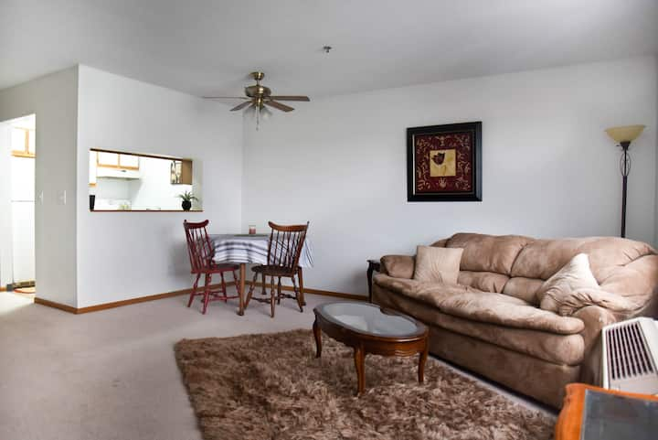 Comfortable & Affordable Downtown Condo
