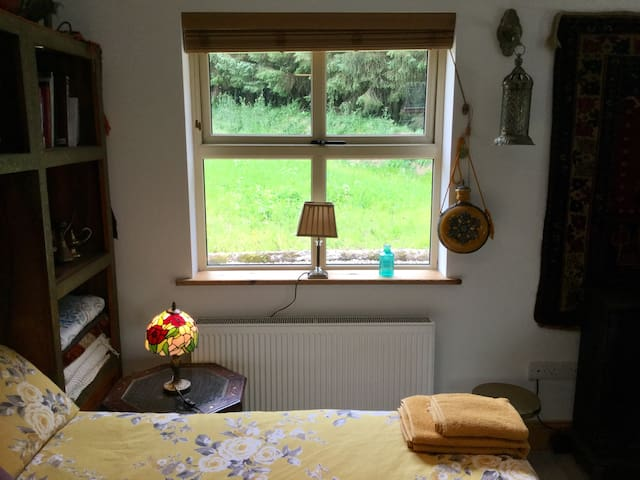 View of Irish wildflower meadow from double bed