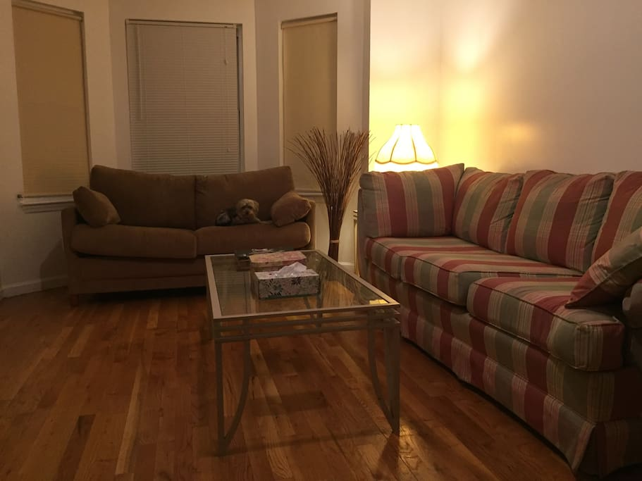 Living Area with Sleep Sofa