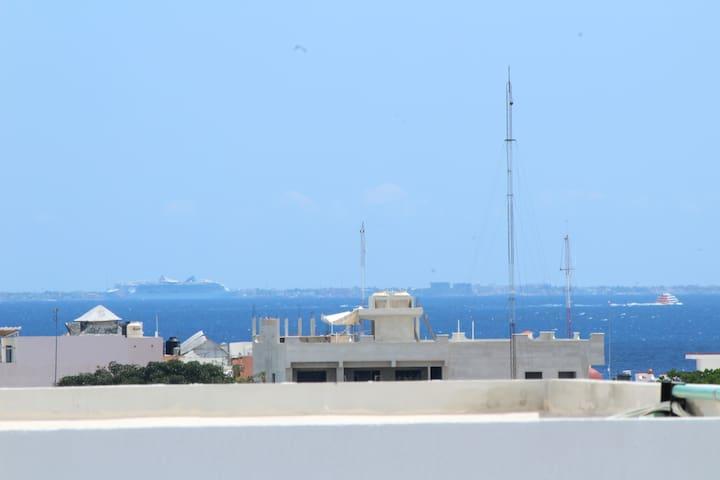 Vista del roof garden.