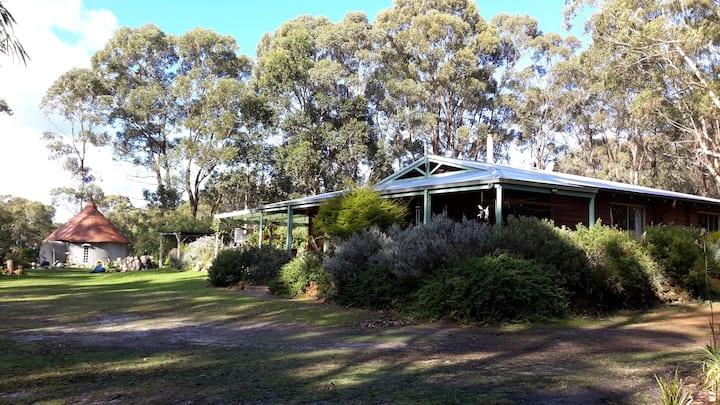 Kangaroos & Prolific Birds Life