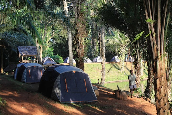A tent by a lake on a mountain at #MagorotoForest