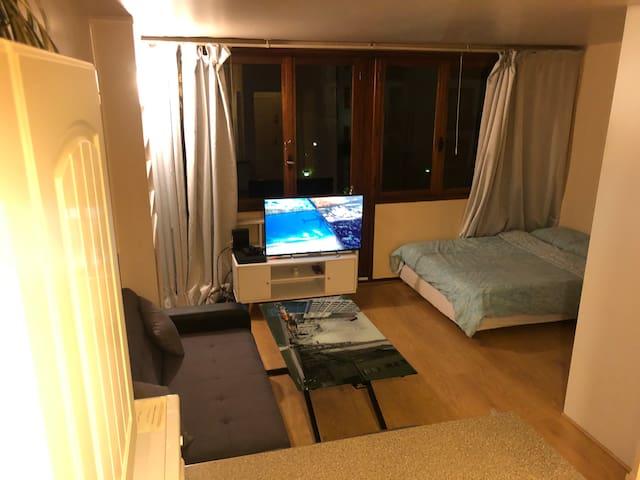 Cosy 1-Bedroom Flat/ Spacieux Studio dans le 15e