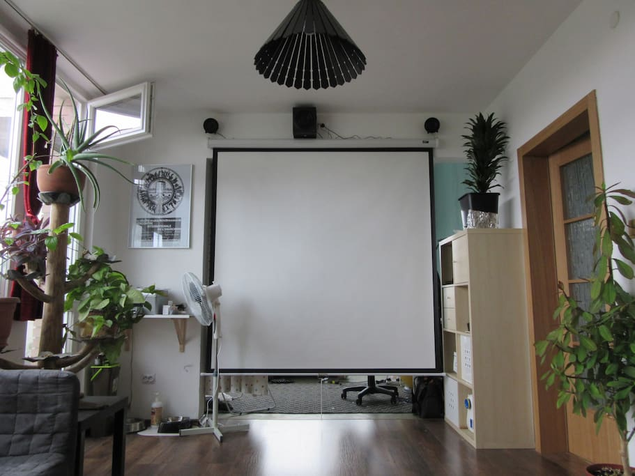 The home cinema seen from the sofa.