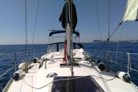 Sailing, beautiful coves,bed, food - menorca