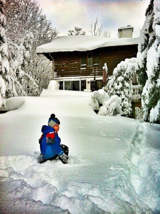 Grand terrain sur le côté du chalet pour jouer dehors.
